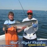 11.05.10 stripers2